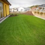 Zasévání trávníku